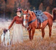 Russian greyhound photo 9