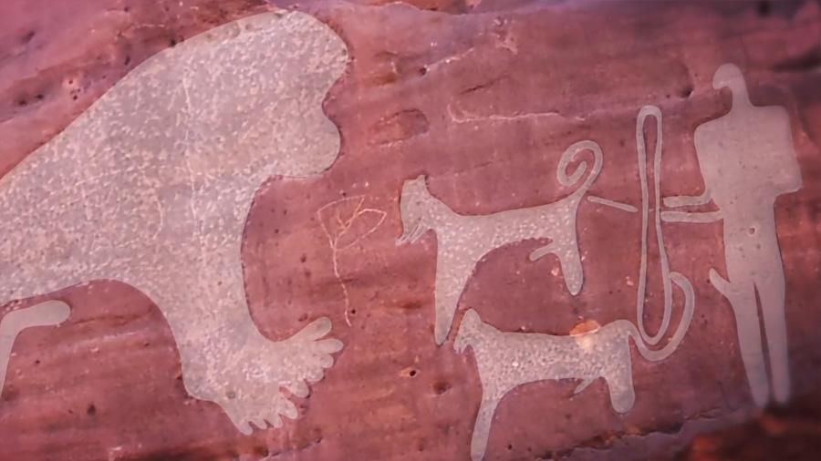 Первые в мире изображения собак