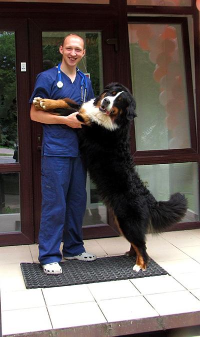 Ветеринар Дубовицкий Юрий Игоревич